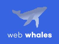 Koppel SnelStart aan uw webshop met Databazen